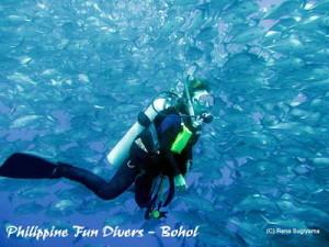 undersea scuba diving Bohol