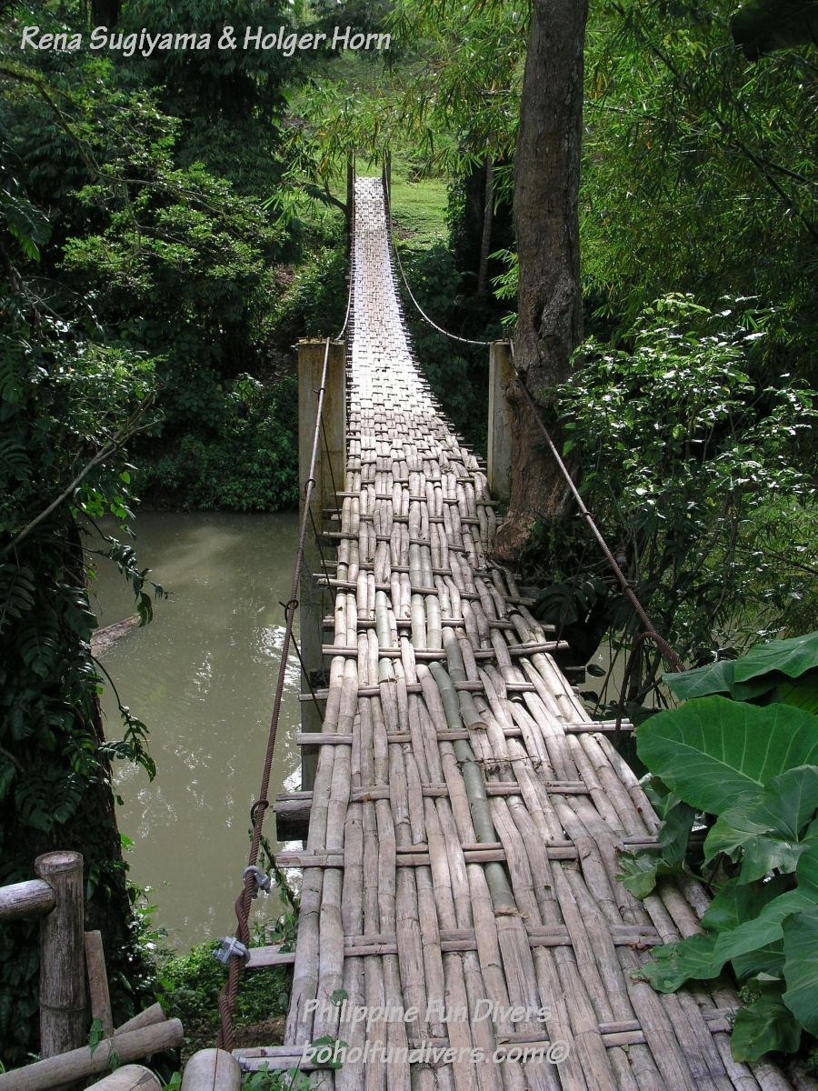 Philippine Fun Divers Alona Beach Panglao Bohol Adventure trip Loboc River hanging bridge
