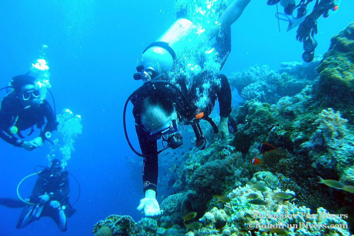 Philippine Fun Divers - Divers Alona Beach Panglao Bohol President Ramos 6