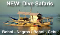 safari_ad_bohol_2013