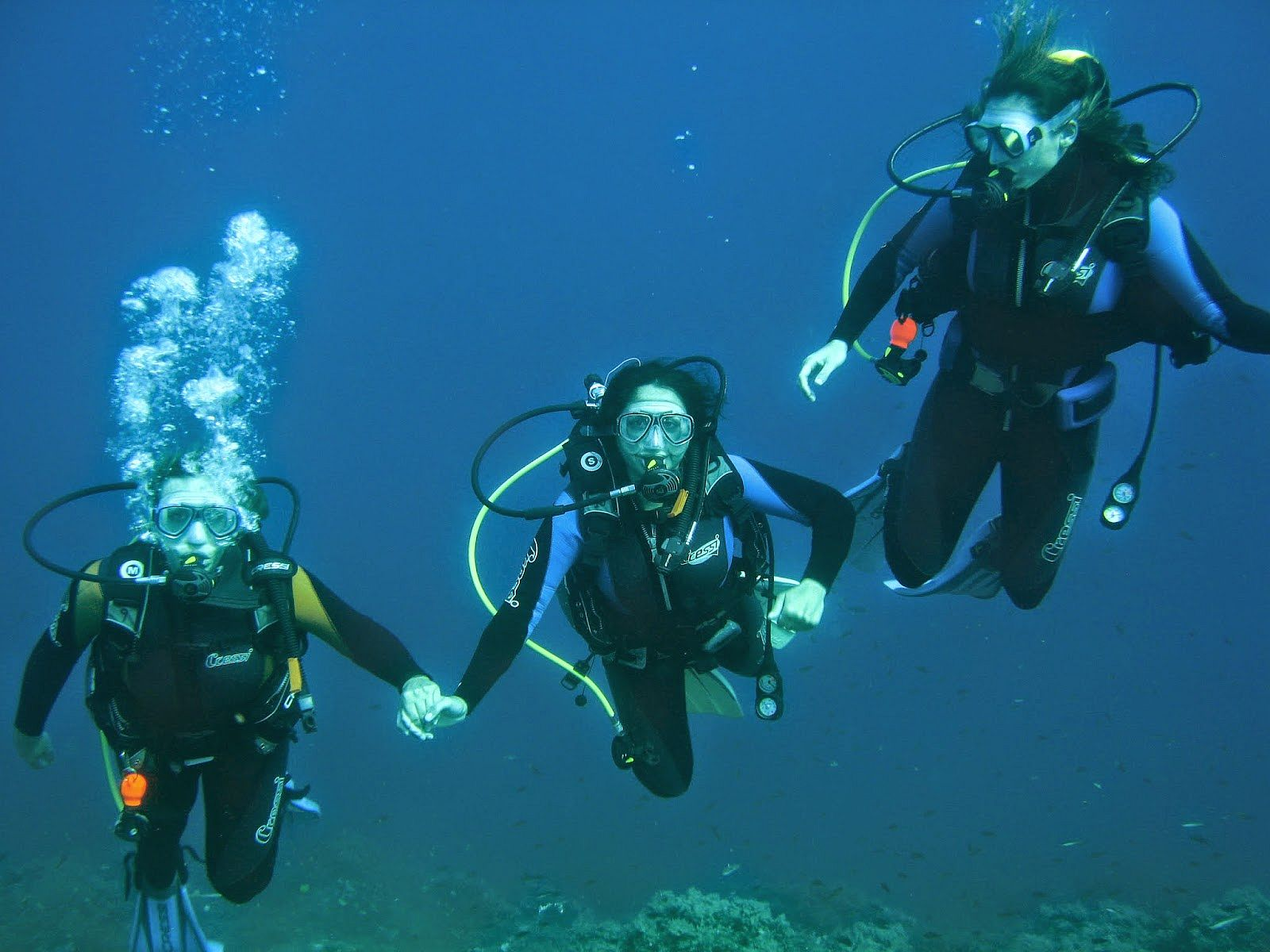 Diving With Us